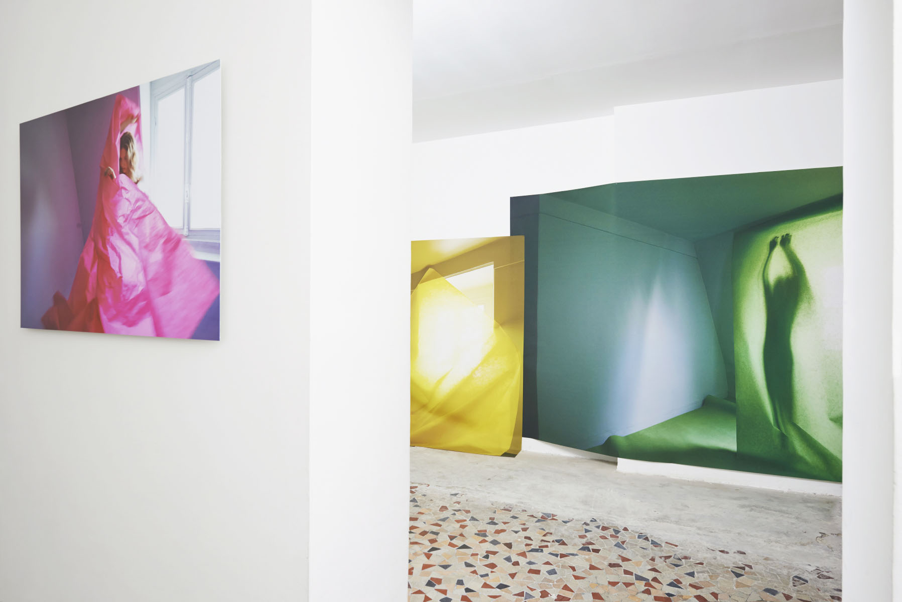True colors exhibition by sophie delaporte
